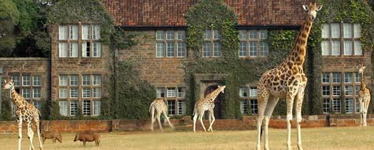 nairobi-giraffe-manor-house